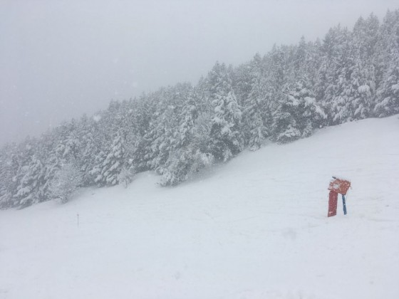 The quality of the snow was powder today