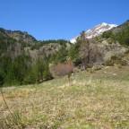 Countryside near Ordino