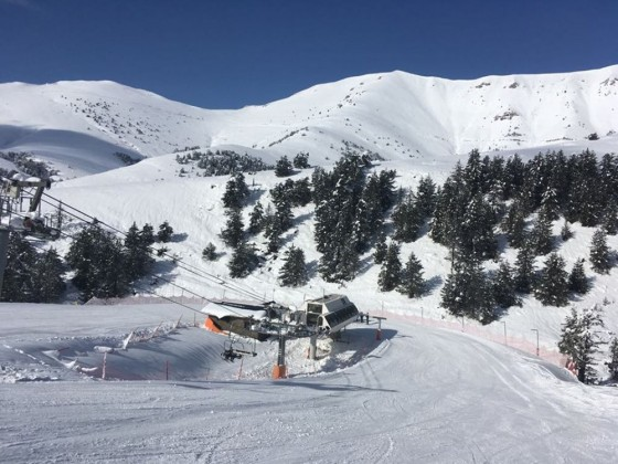 Fresh snow and blue bird skies - a perfect combination!