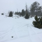 A few cm of fresh snow today on the slopes