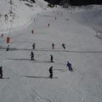 ski group snake