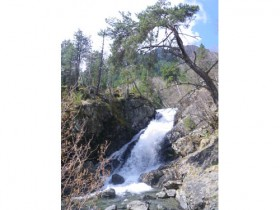 Waterfall by the Crest Run