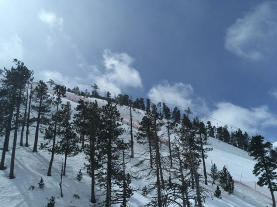 View of the Seturia chairlift behind the trees
