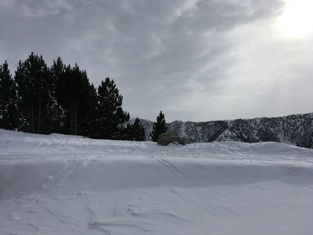 Powder snow everywhere on the mountains of Pal Arinsal