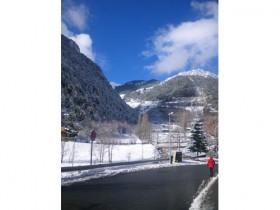 29th January, new snow