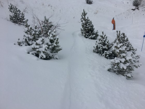 Some off-piste on the edges of Marrades