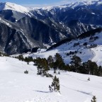 Off-piste marks between the trees of Arinsal