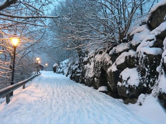 Beautiful white walks in Arinsal