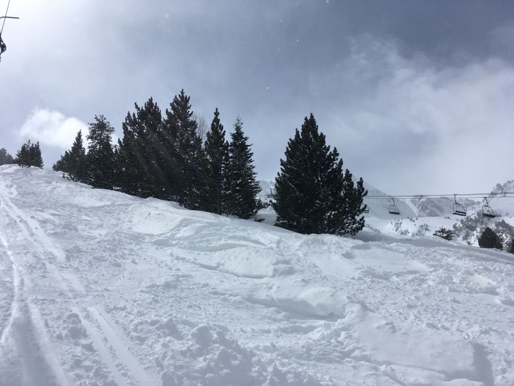 The quality of the snow was excellent