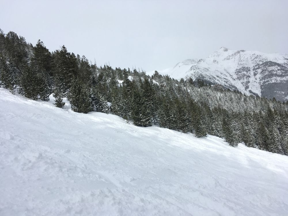 The red slope Coms had plenty of snow today