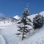 New Snow 18th February 2010