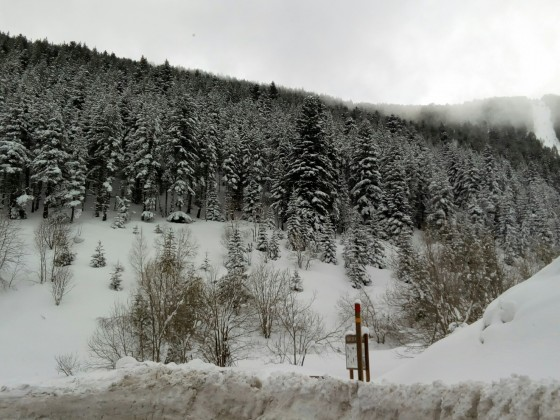 Up to 220cm of snow in Arinsal