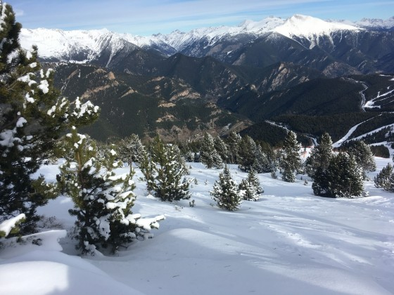 Our first off piste of the season among the trees of Pal
