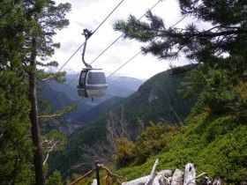 Gondola Above the Woods
